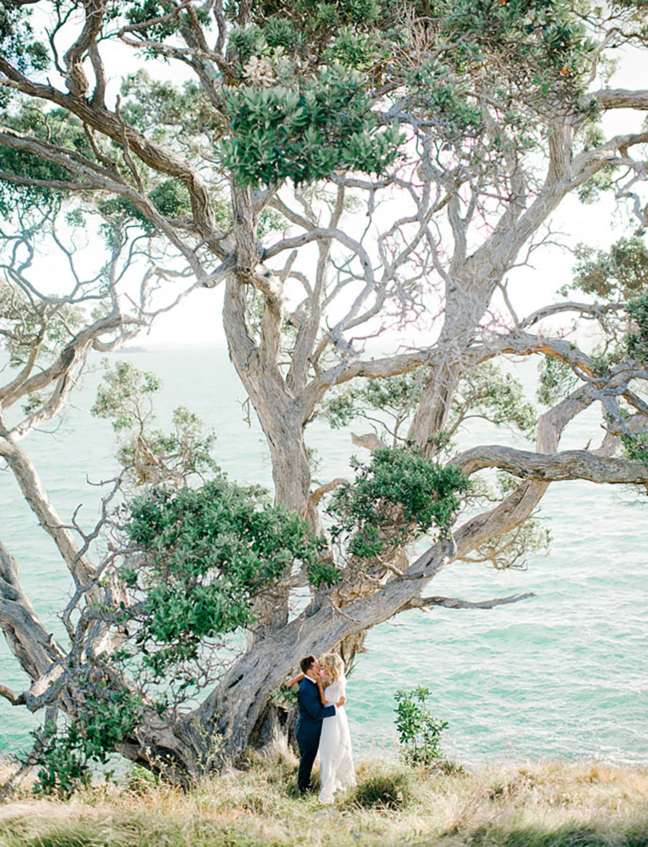 New Zealand elopement under an old tree by the sea