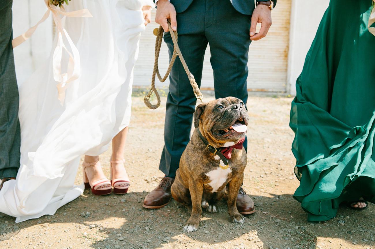 Coastal California Wedding
