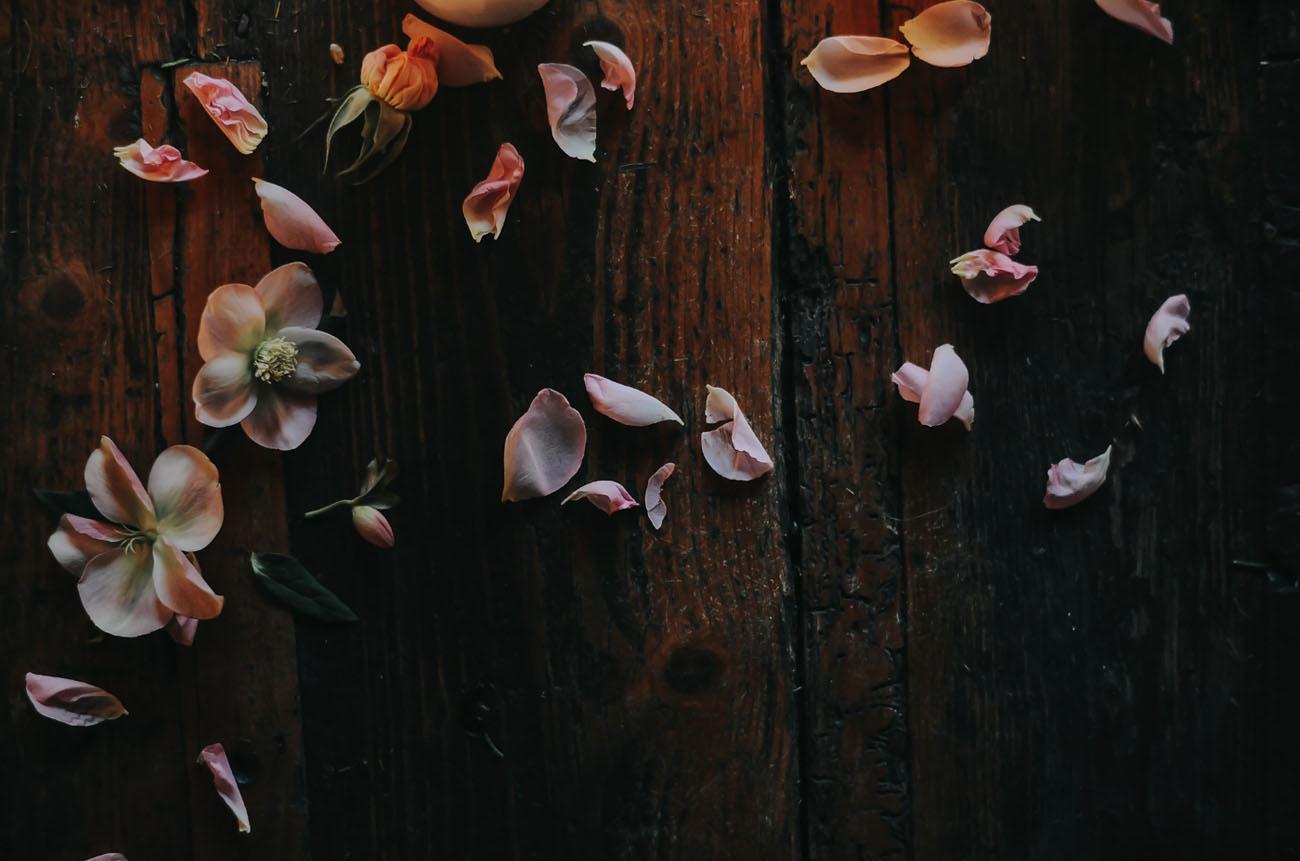 loose petals