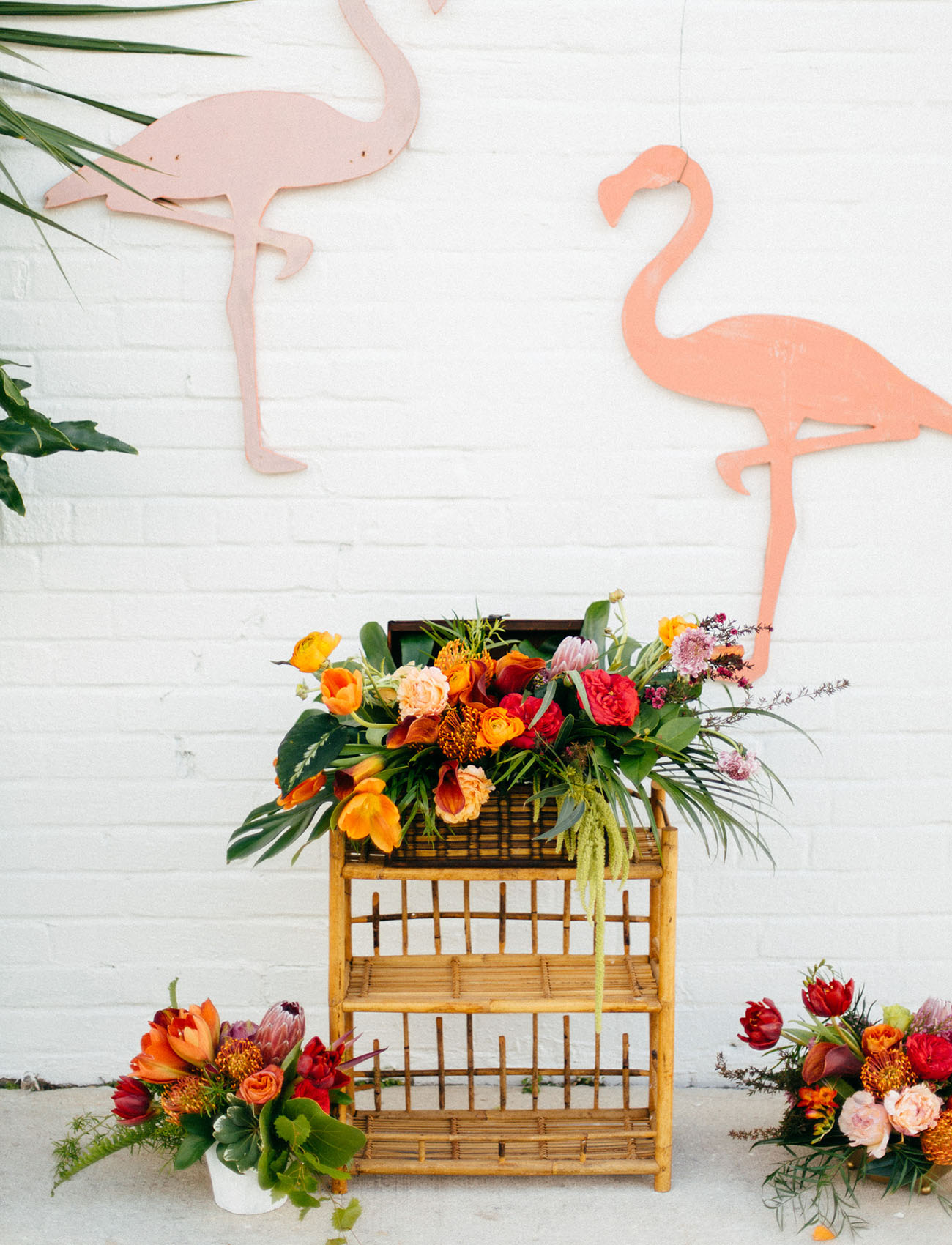 flamingo backdrop