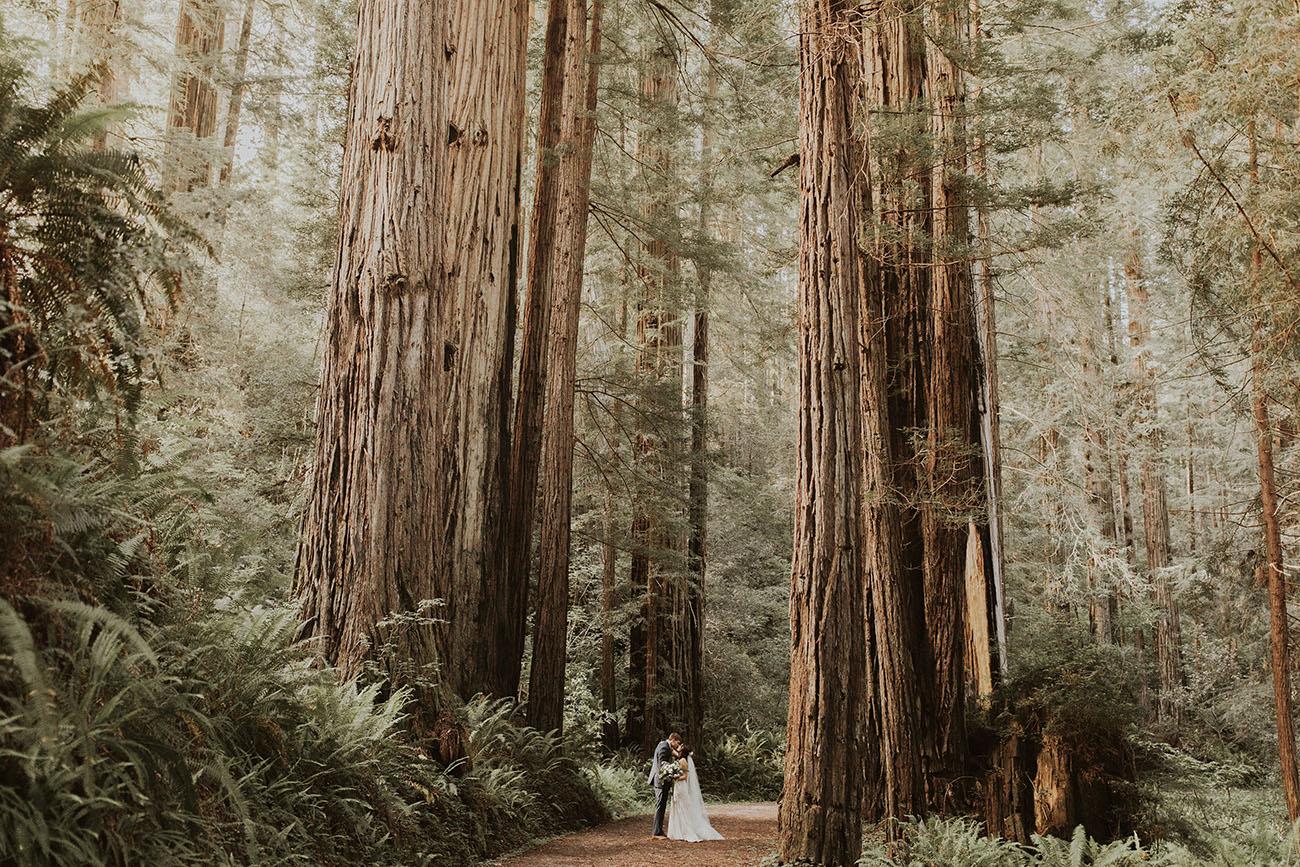 Prairie Creek Redwood Park elopement