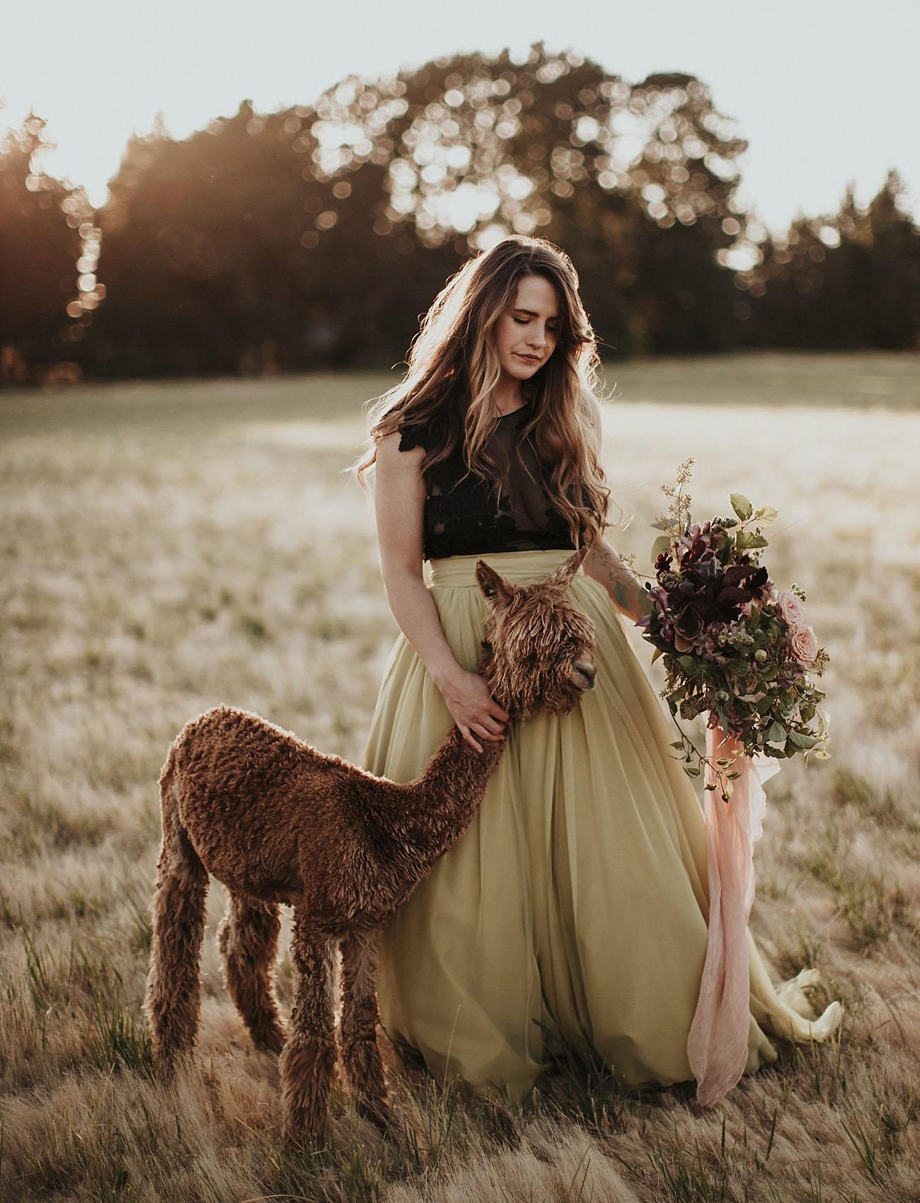 A Bride and Her Alpaca