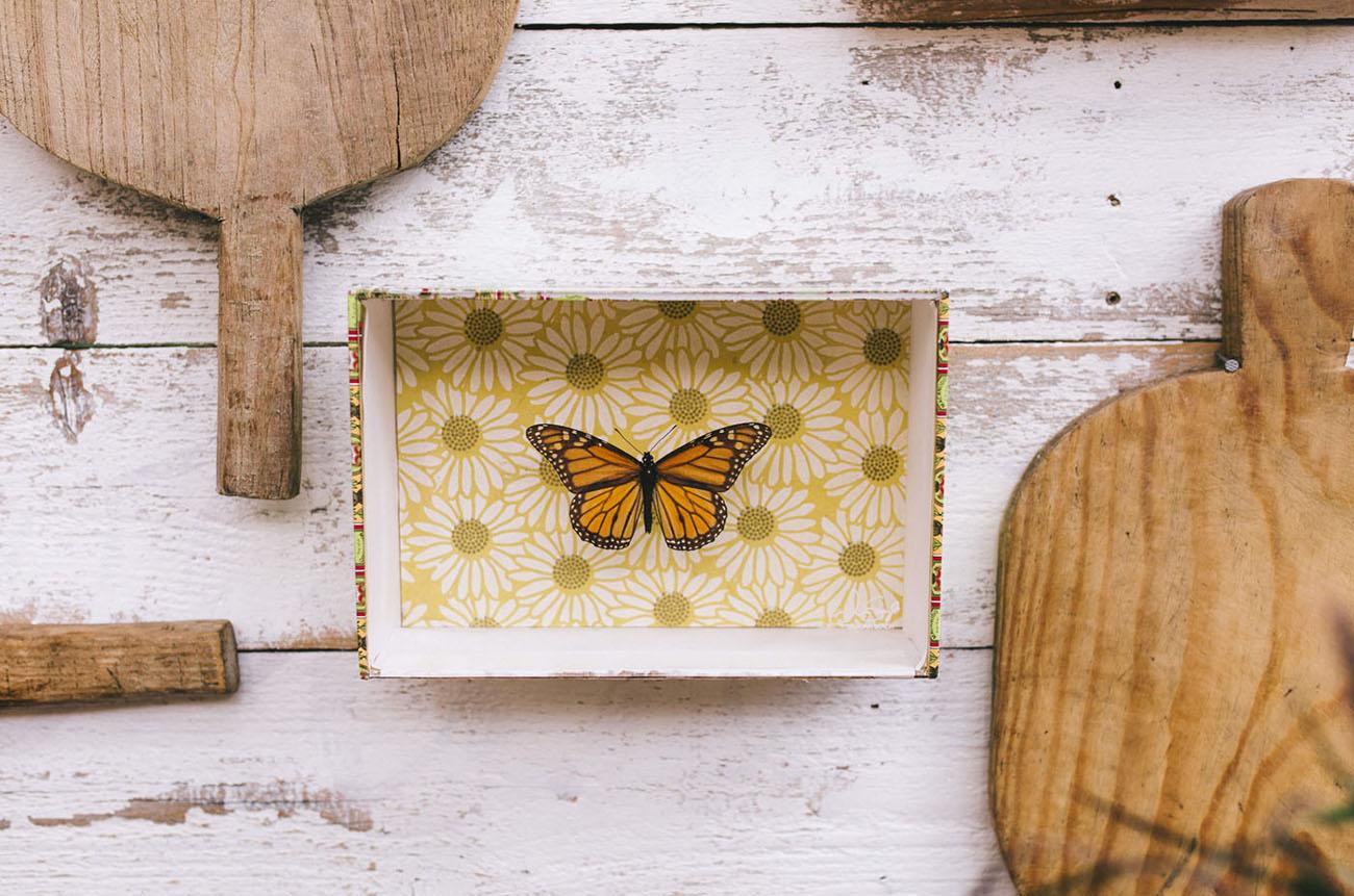 butterfly backdrop
