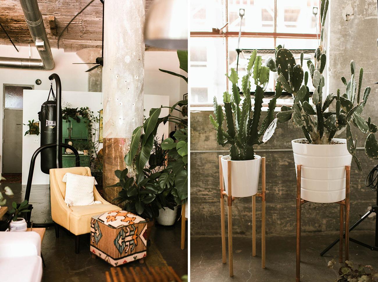 Modern Urban Jungle Home Tour