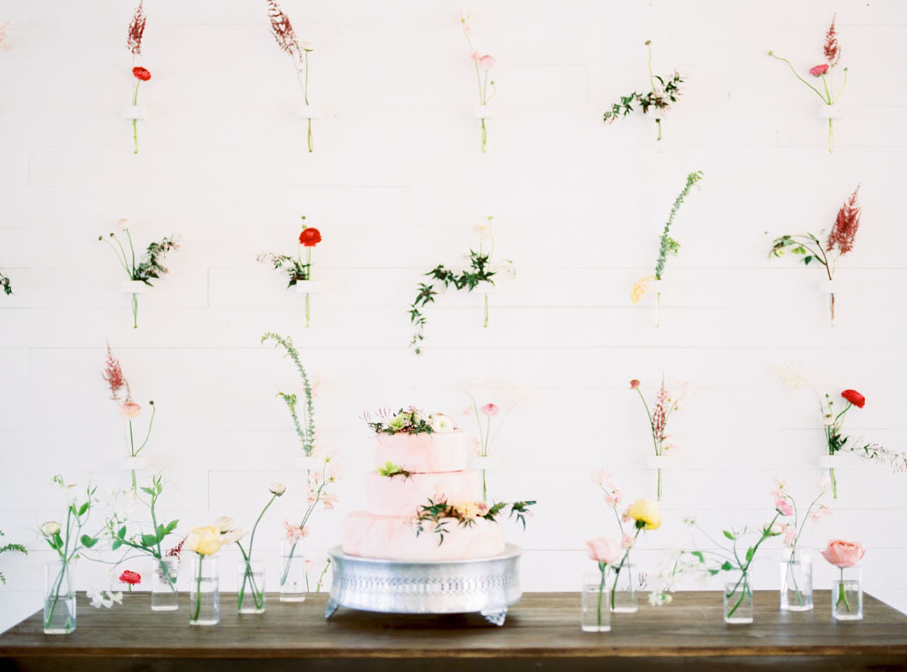 flower stem backdrop