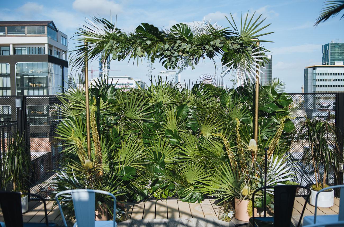 tropical fan backdrop