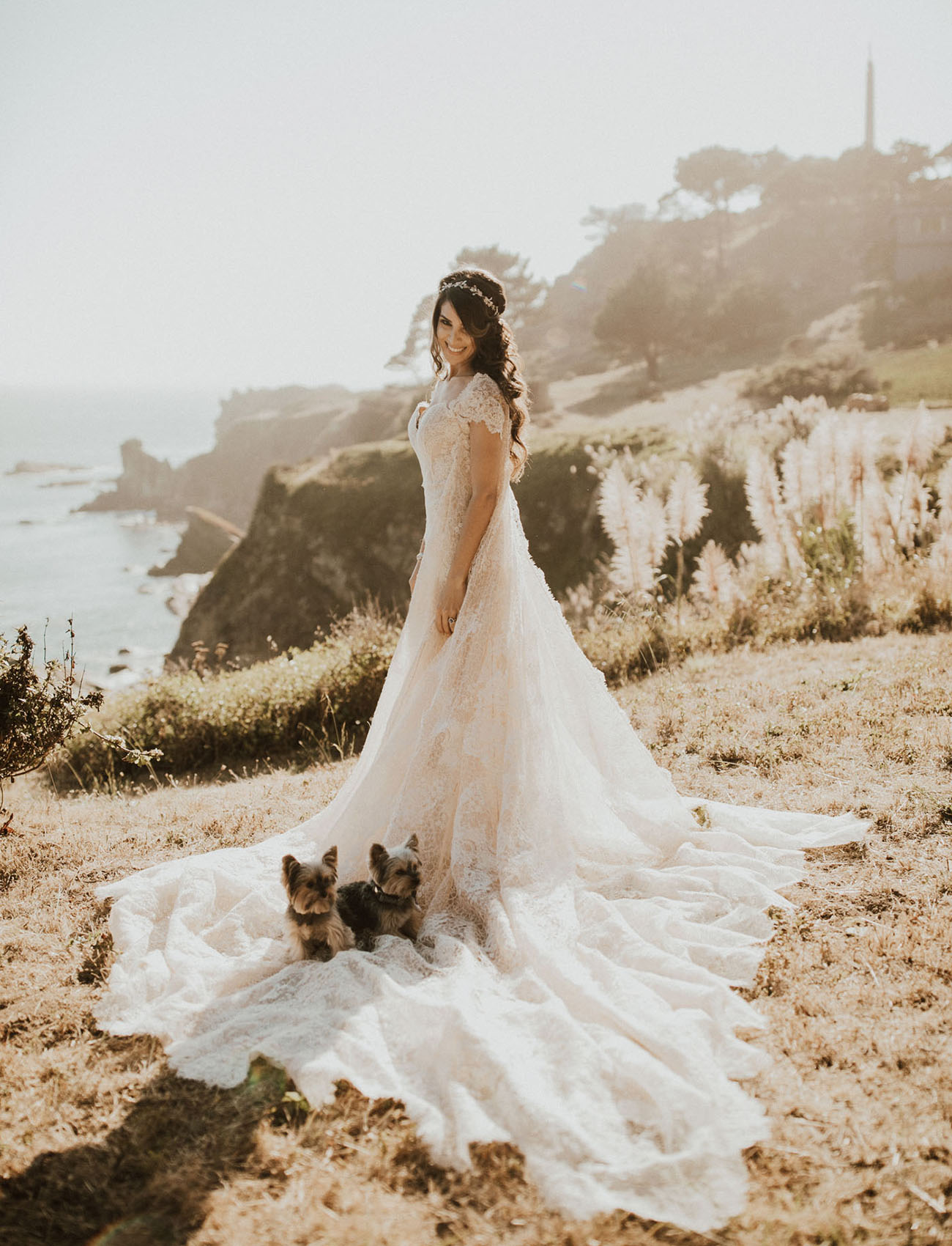 bride and pups