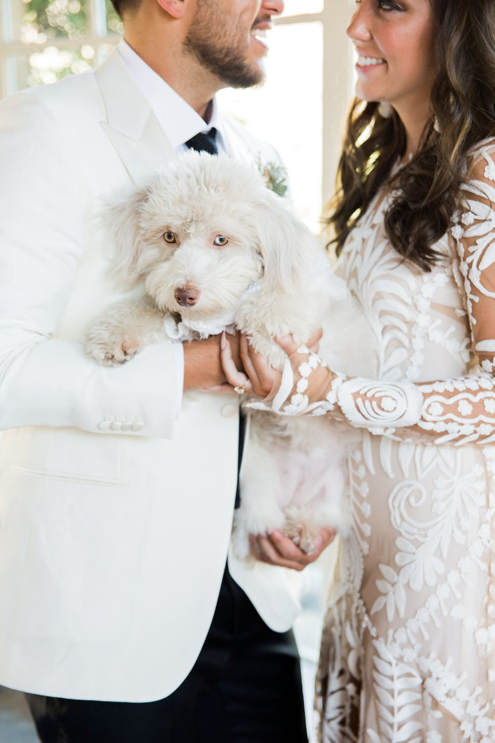 wedding pup