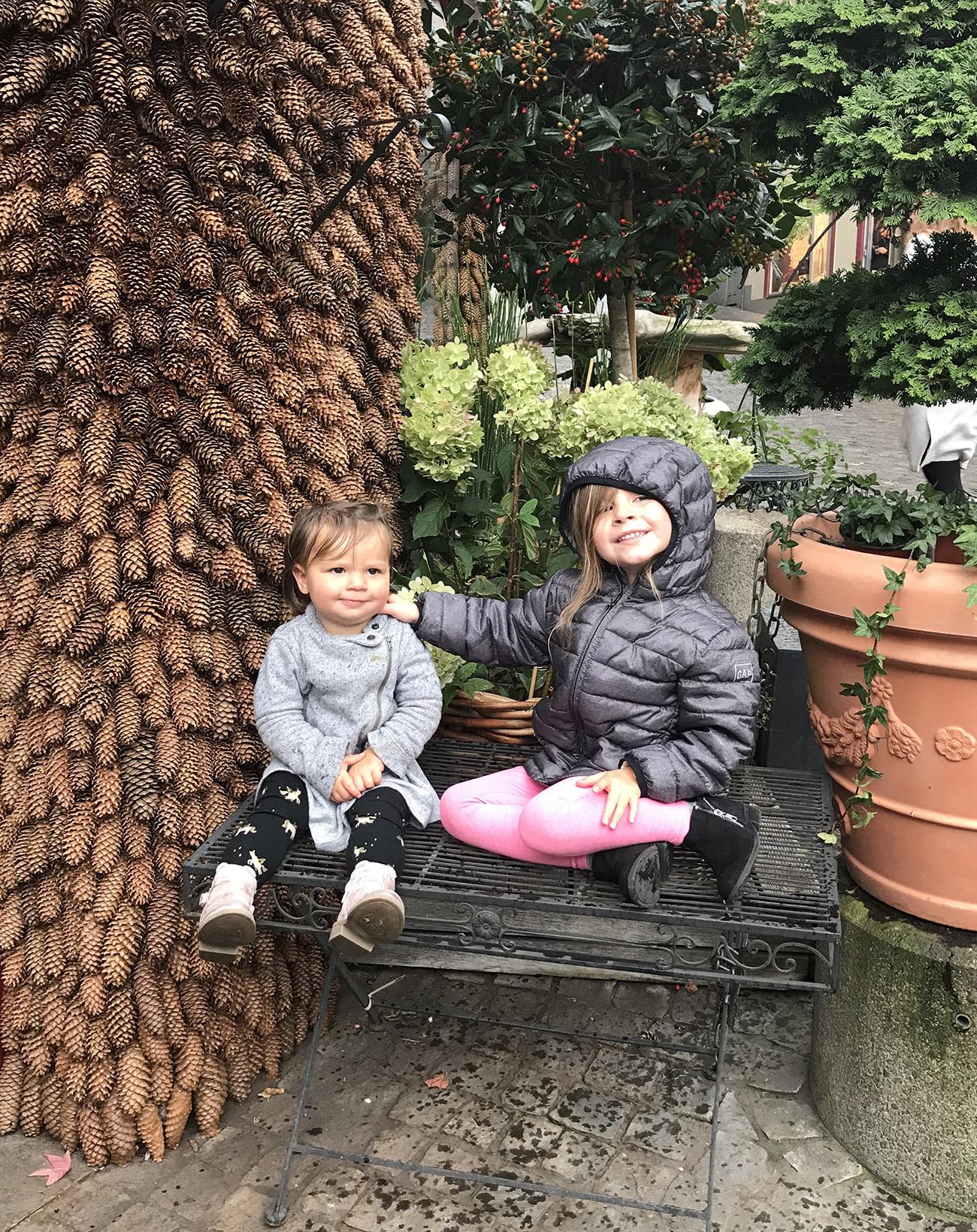 Pinecone Wall in Zurich