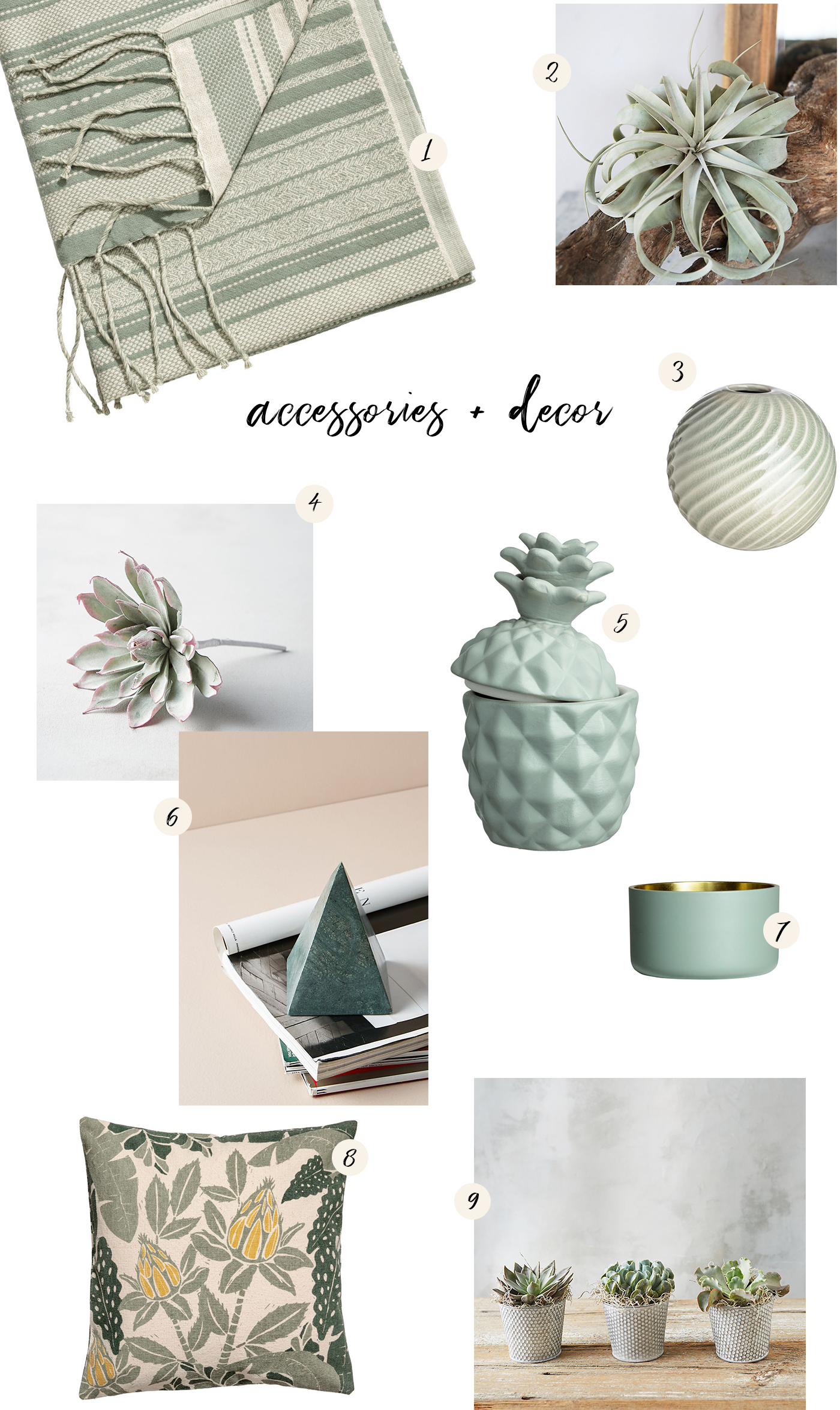 sage accessories and decor
