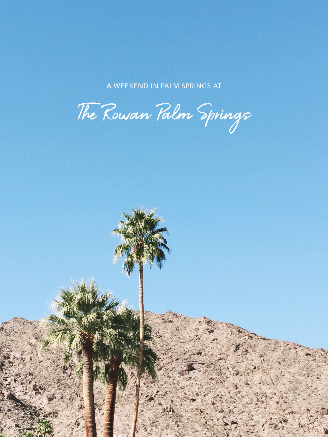 A Weekend in Palm Springs at The Rowan Palm Springs - Green Wedding ...