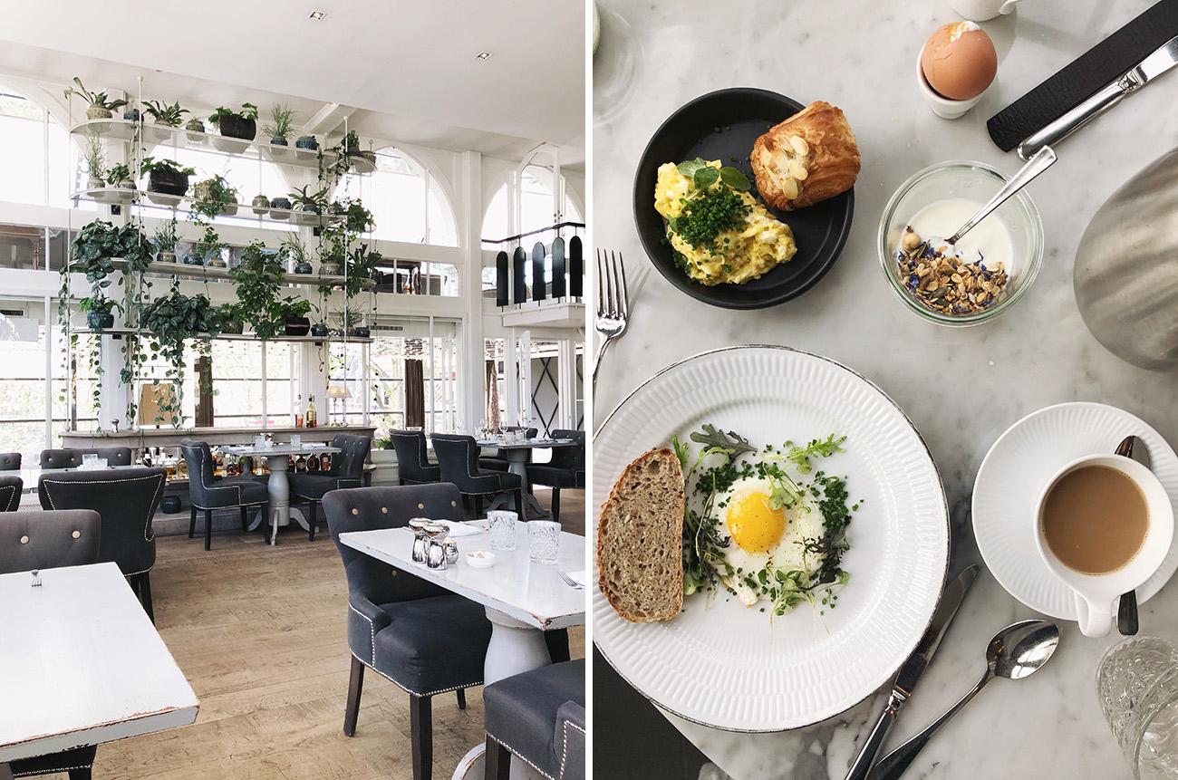 nimb hotel breakfast