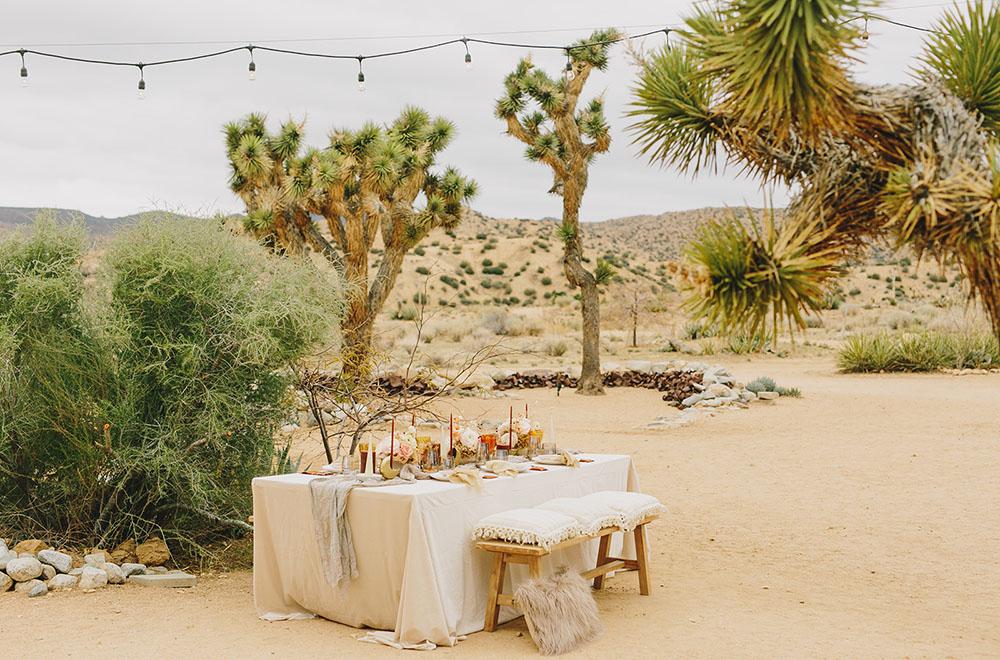 Celestial Desert Inspiration