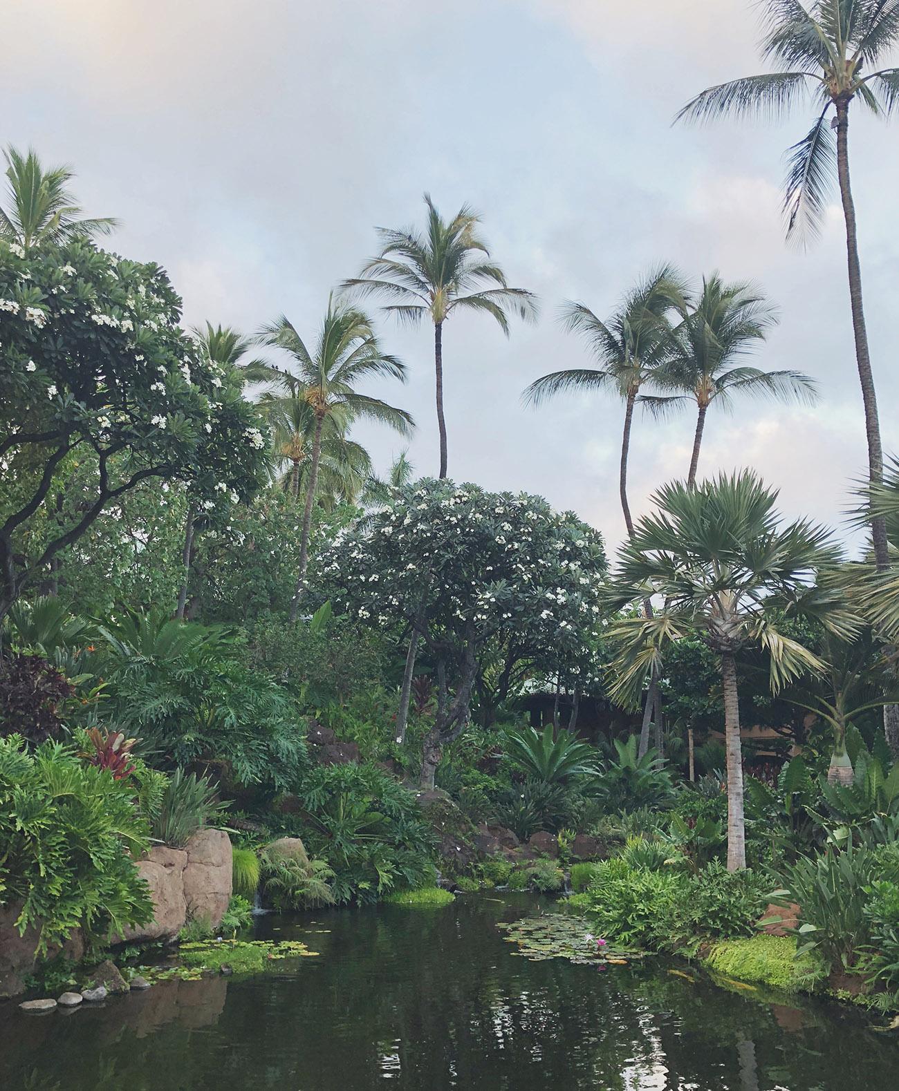 Lanai Four Seasons Resort