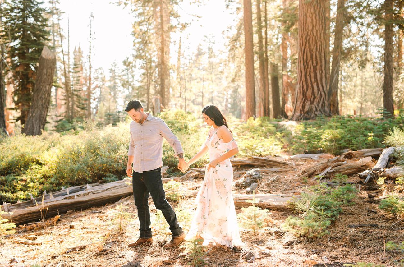 Yosemite Park Proposal