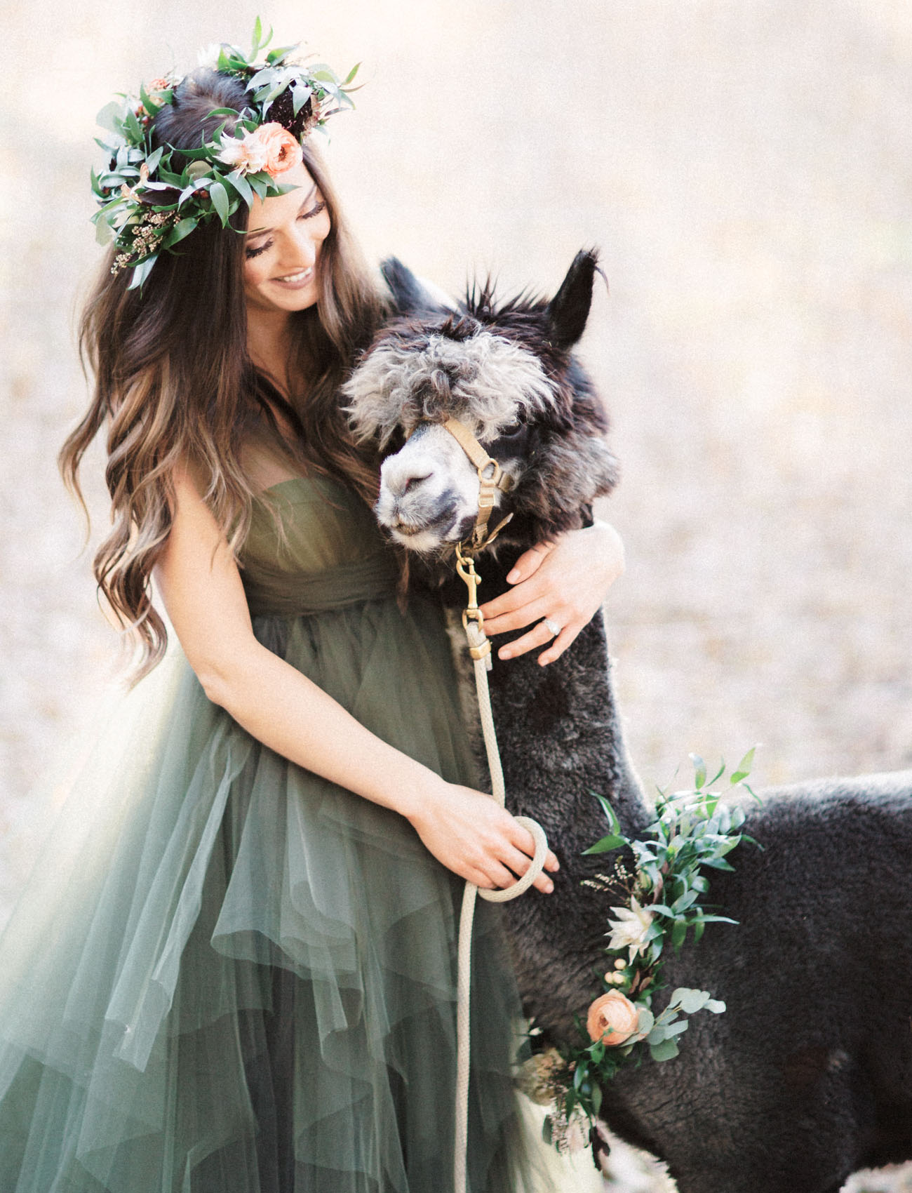 flower crowns and alpaca