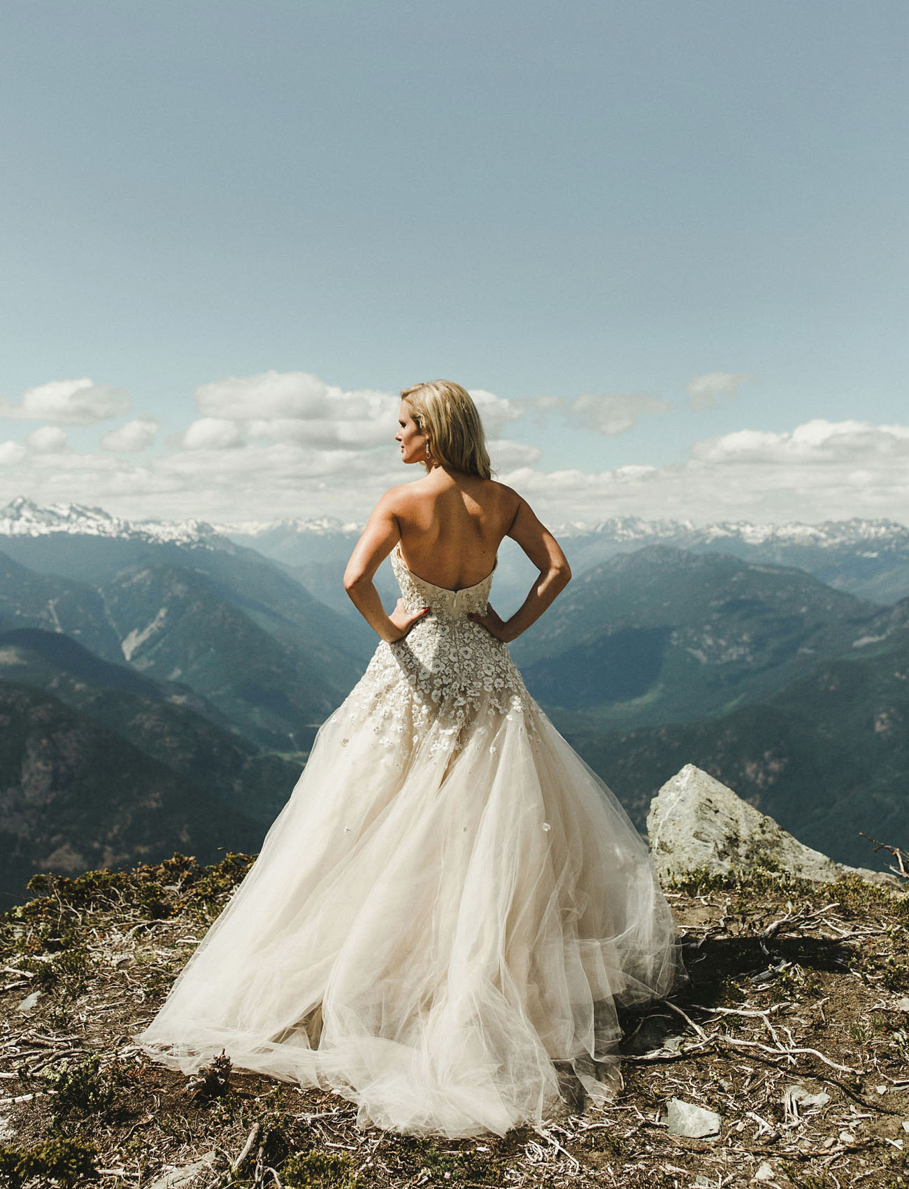 Lian Carlo Wedding Dress