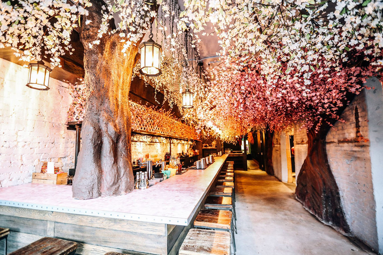 Cherry Blossom Pop-Up Bar Washington DC