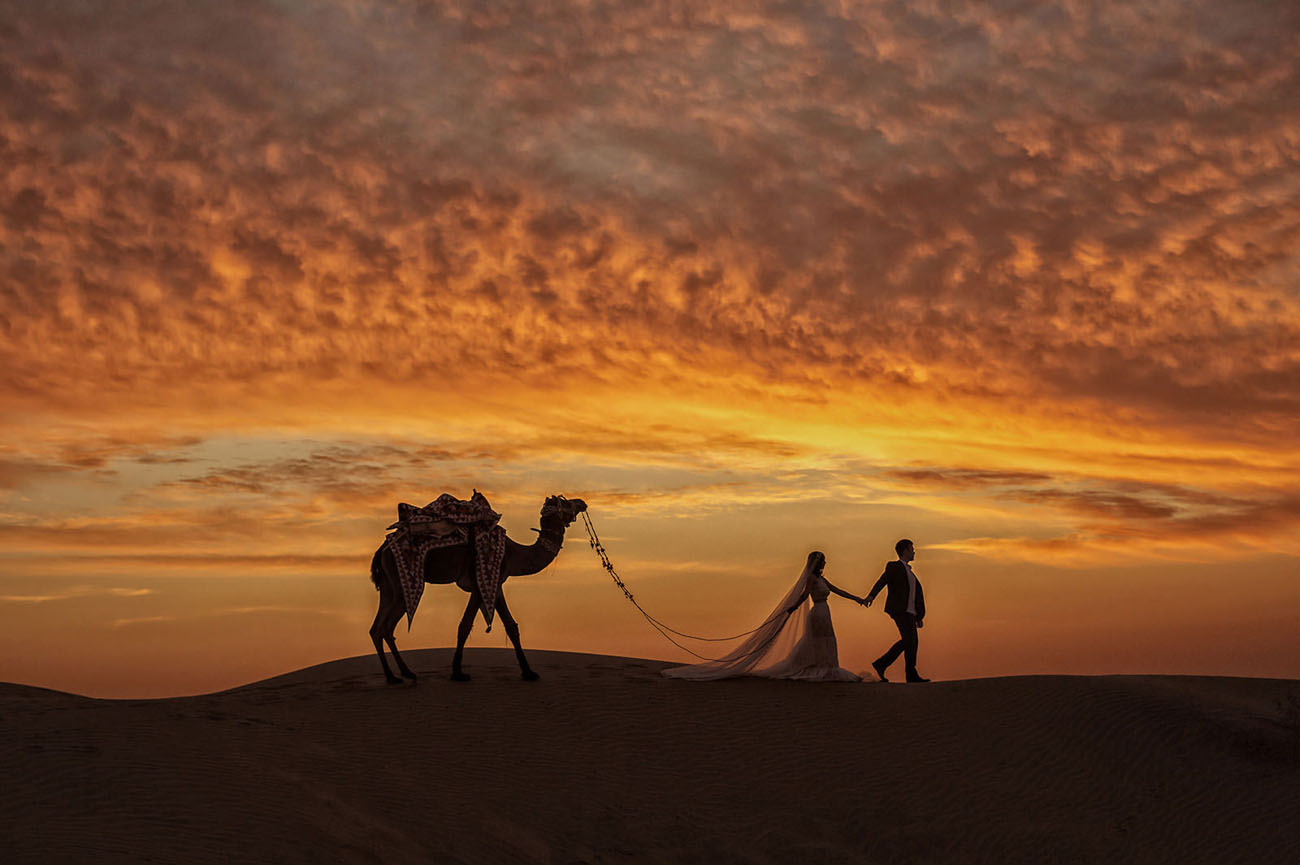 Camel India Wedding