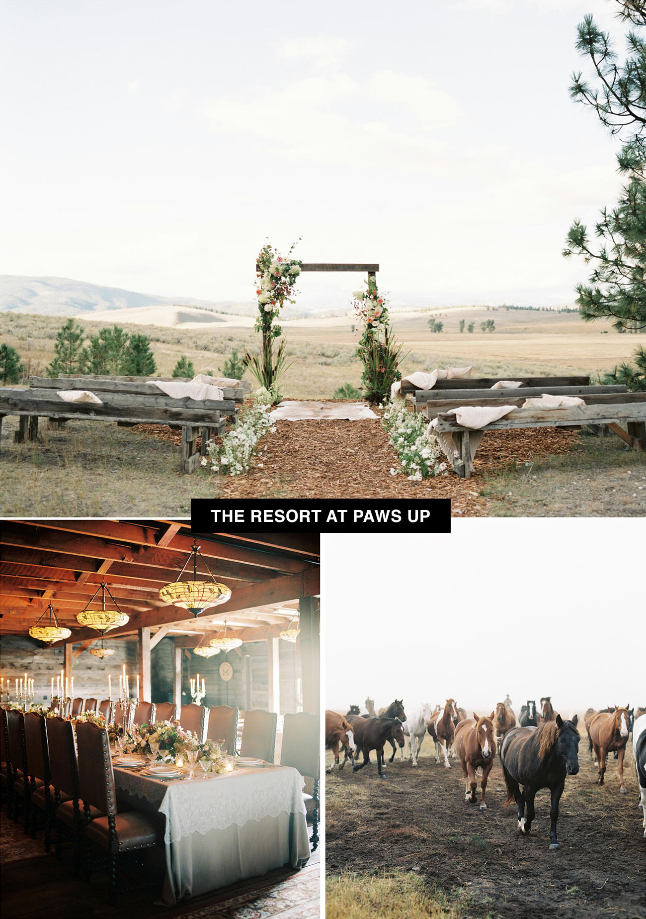 Resort at Paws Up wedding venue in Montana is a top tier glaming resort is an ideal place to get married for lovers of the outdoors