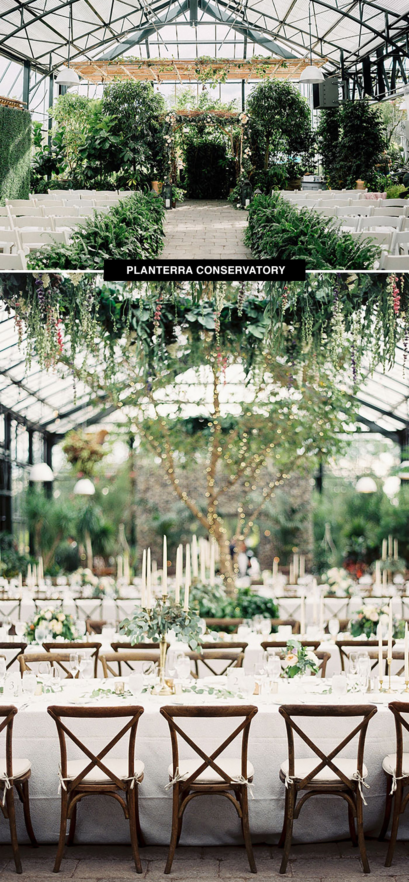 Planterra Conservatory wedding venue in Michigan is a place to get married surrounded by greenery year round