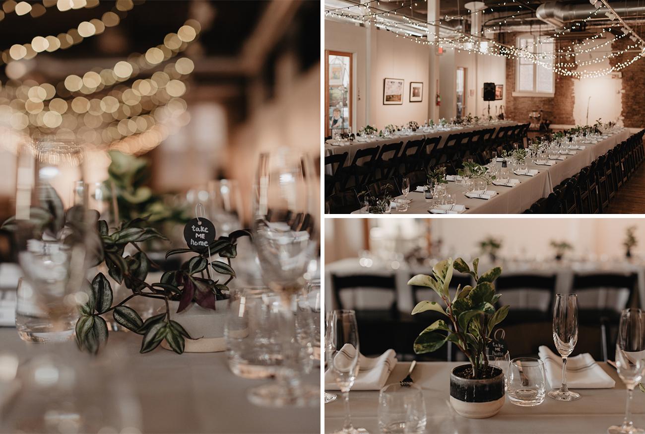 plants as wedding favors