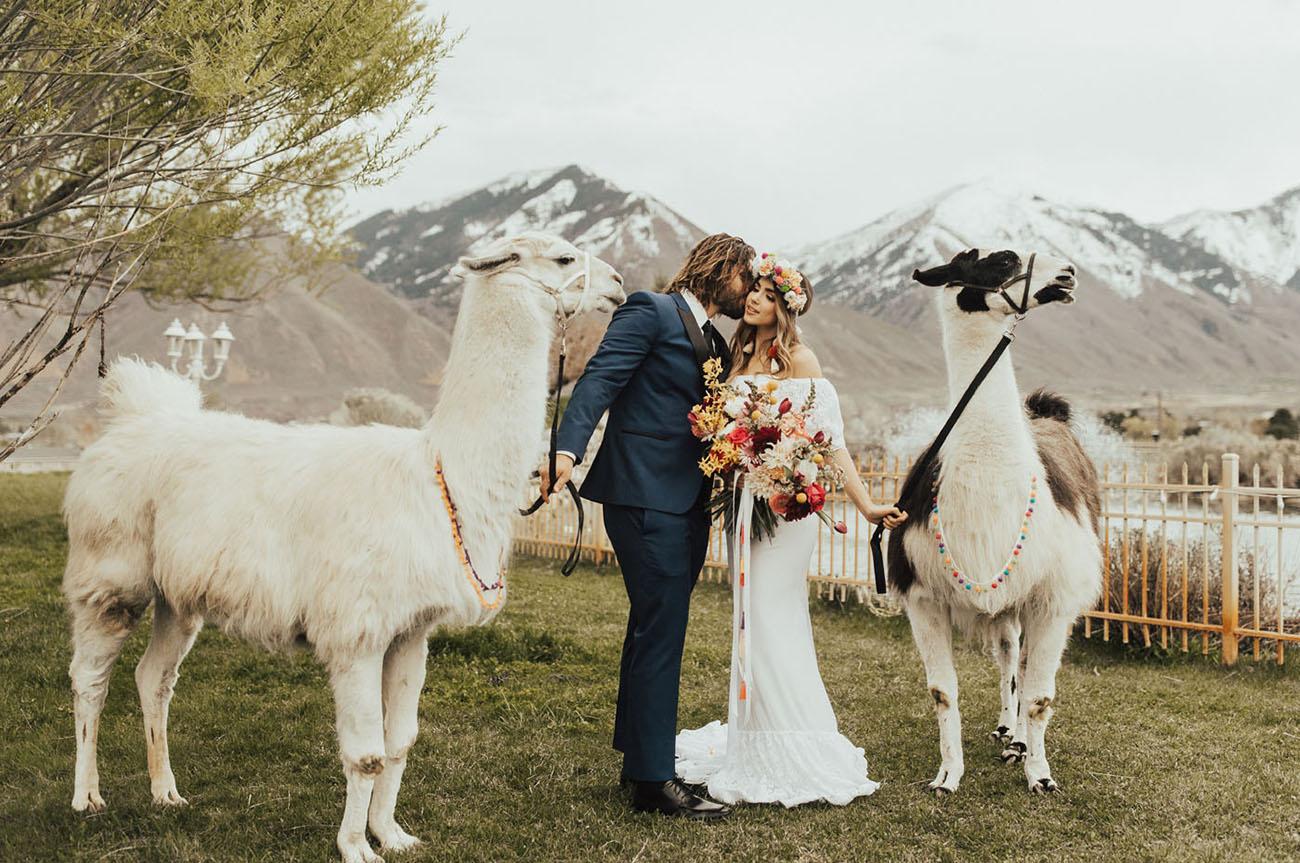 Colorful Llama Wedding Inspiration