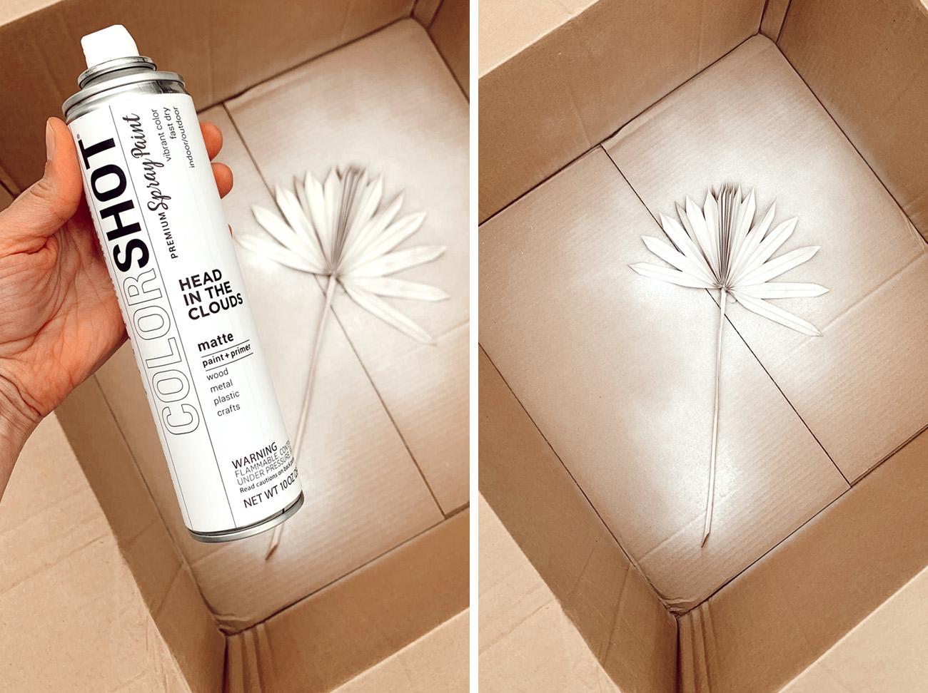 colorshot spray paint