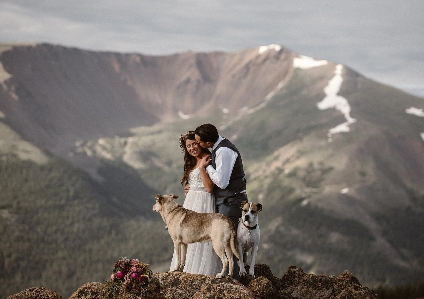 elopement with dog