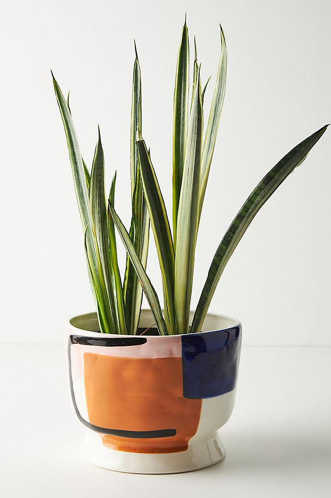 Anthropologie: Sharona Pot