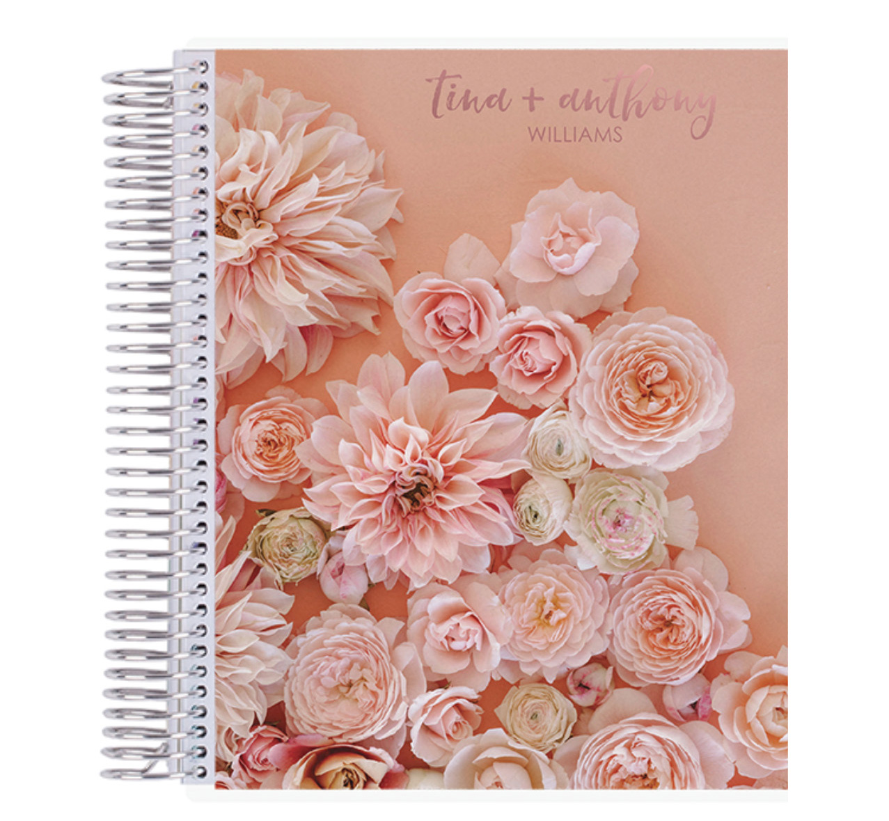 Erin Condren blush notebook