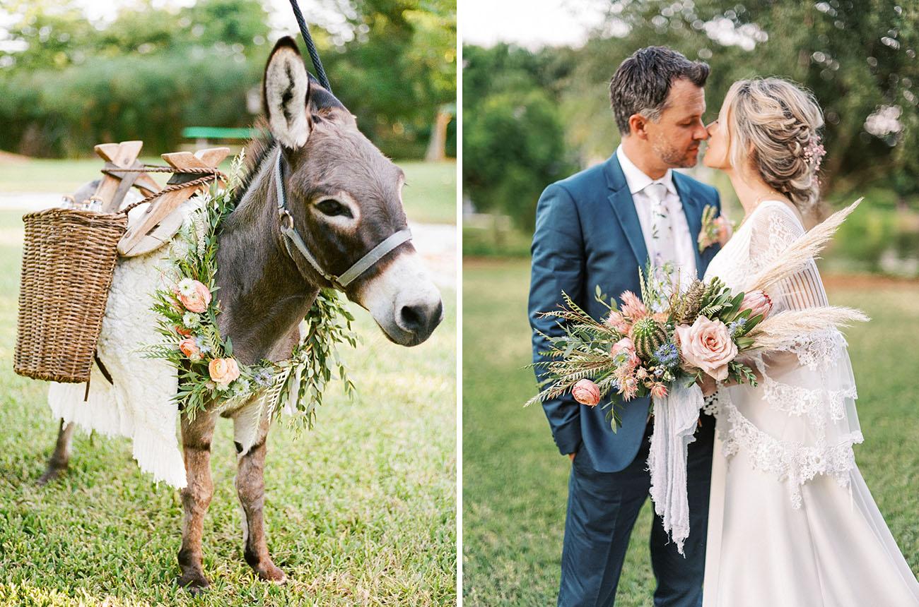 beer burros wedding donkeys