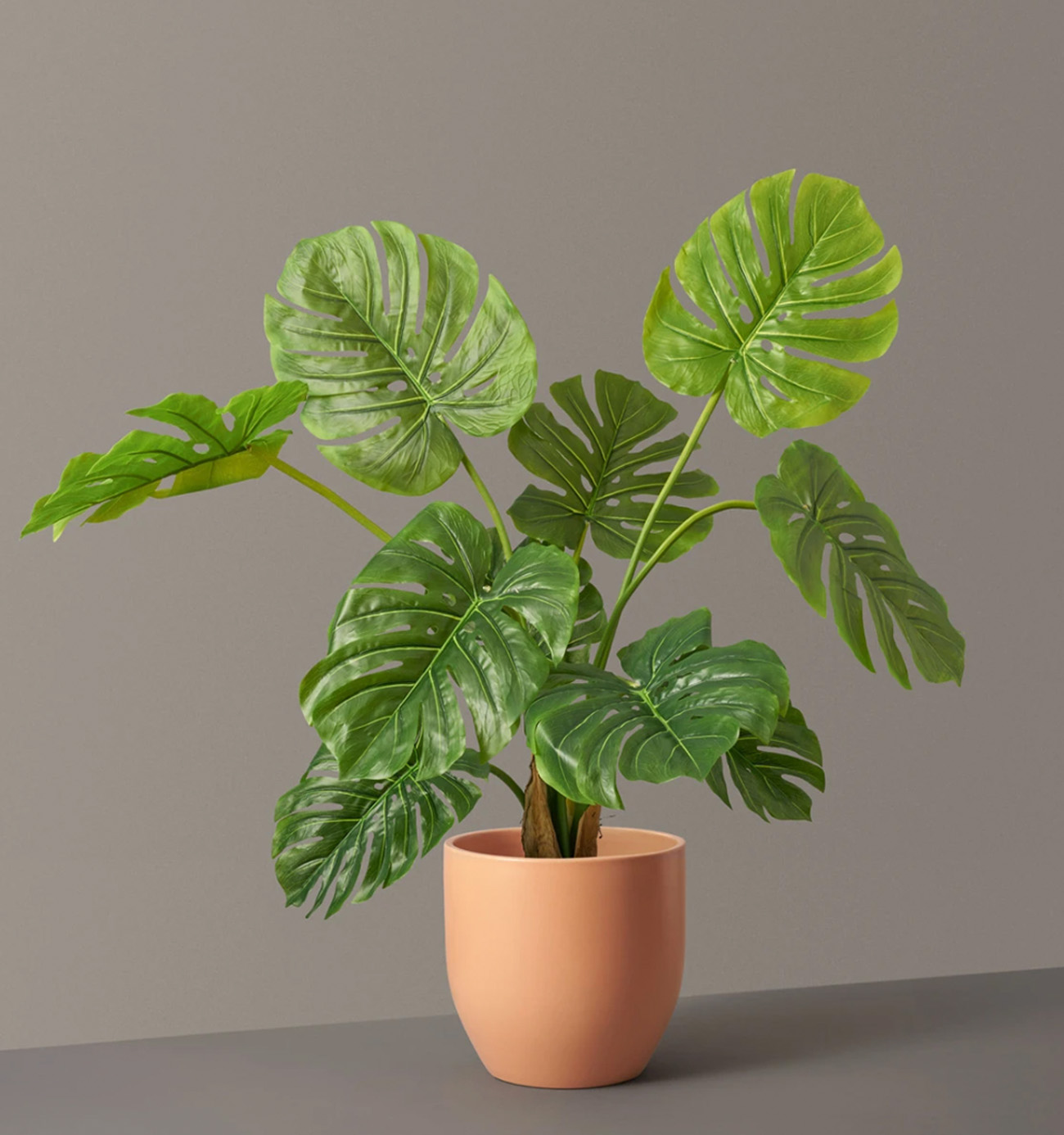 faux monstera plant from the sill