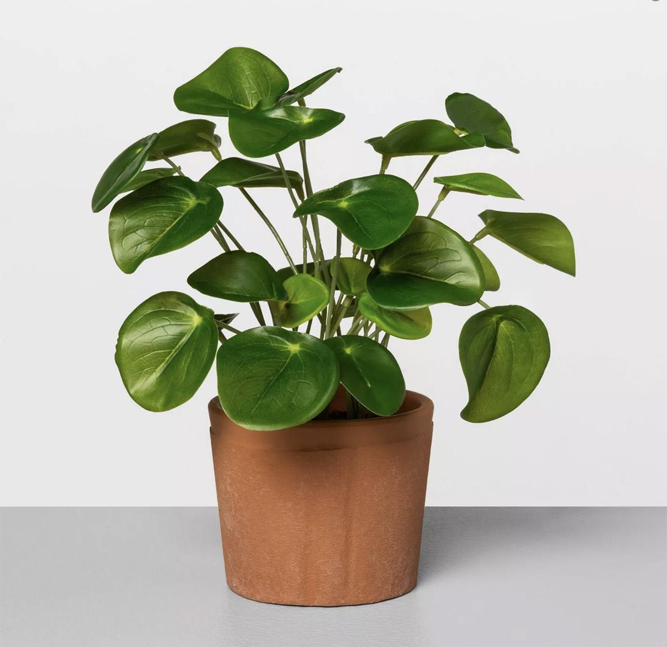 Faux Pilea Potted Plant
