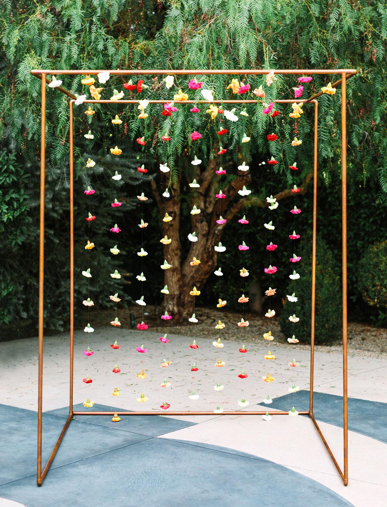 carnation string backdrop