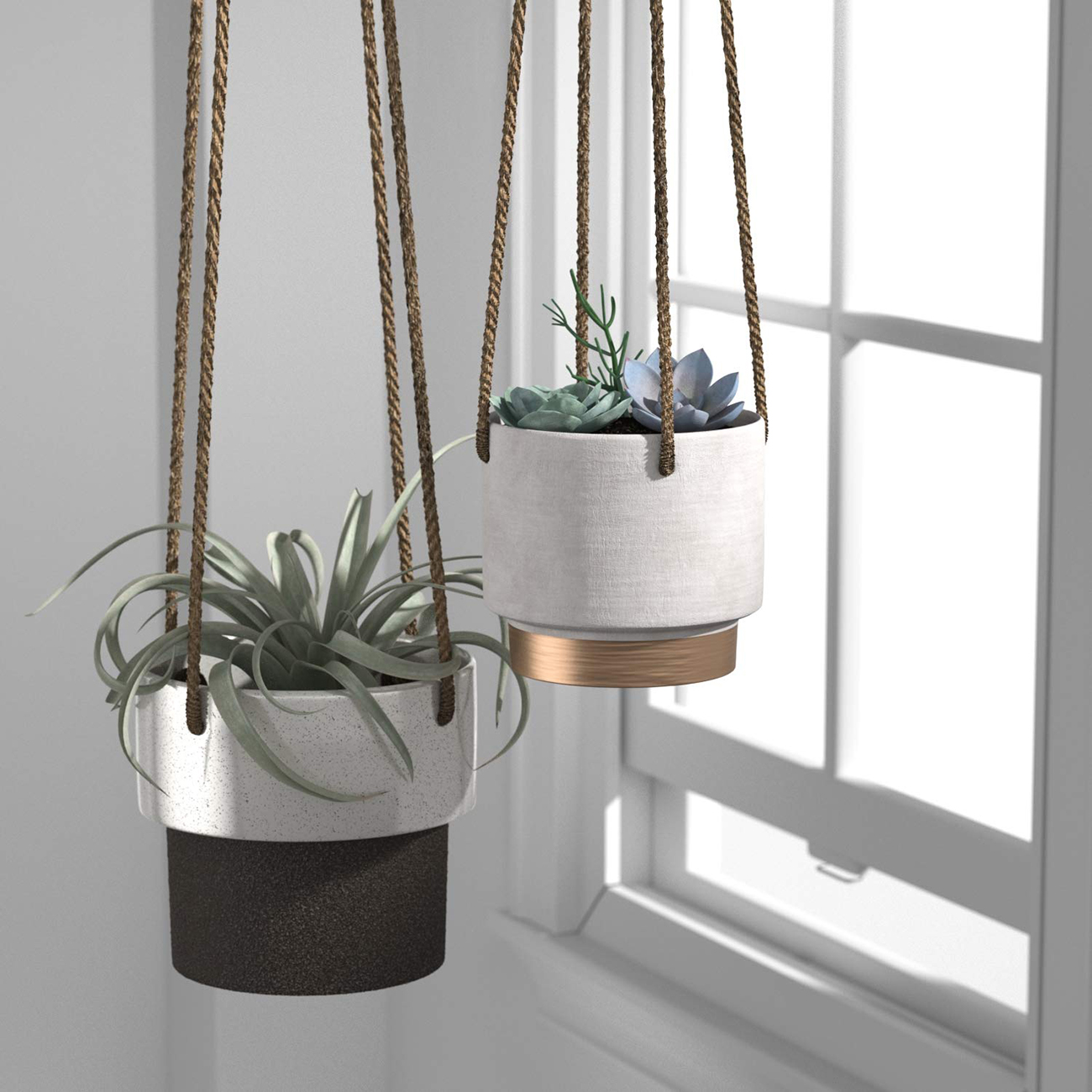 mid-century hanging plants