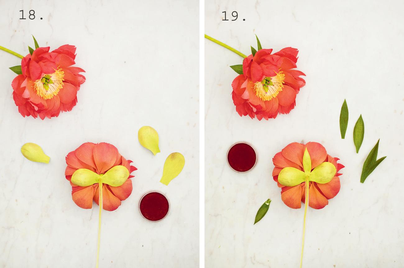 DIY Peony Paper Flowers