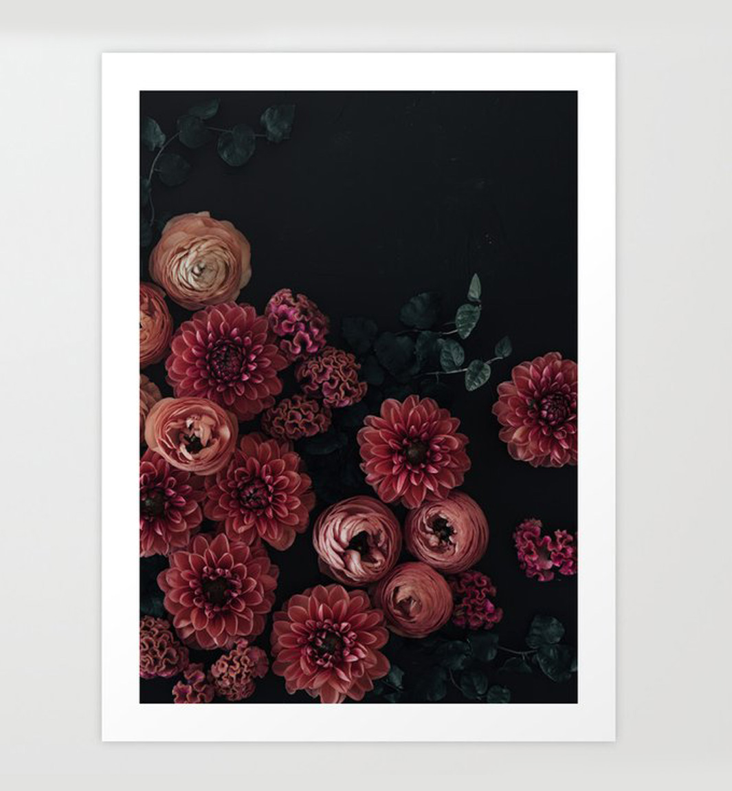 dahlias at night print