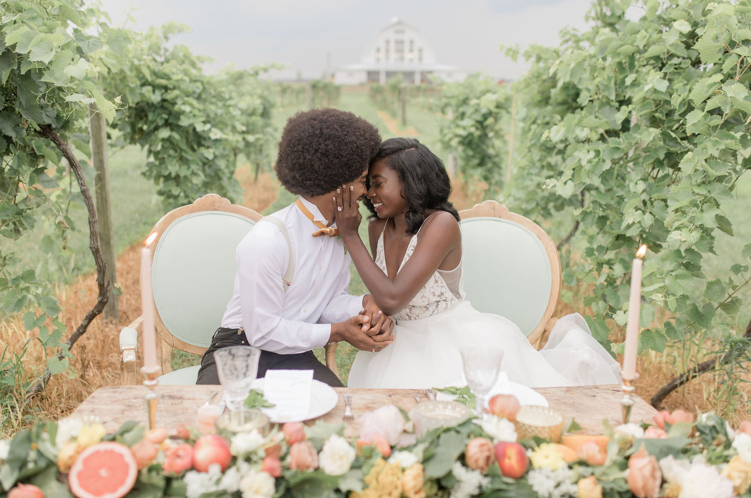 Vineyard Chicago Elopement