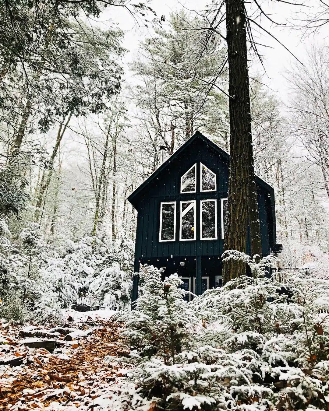 cozy winter cabin rental