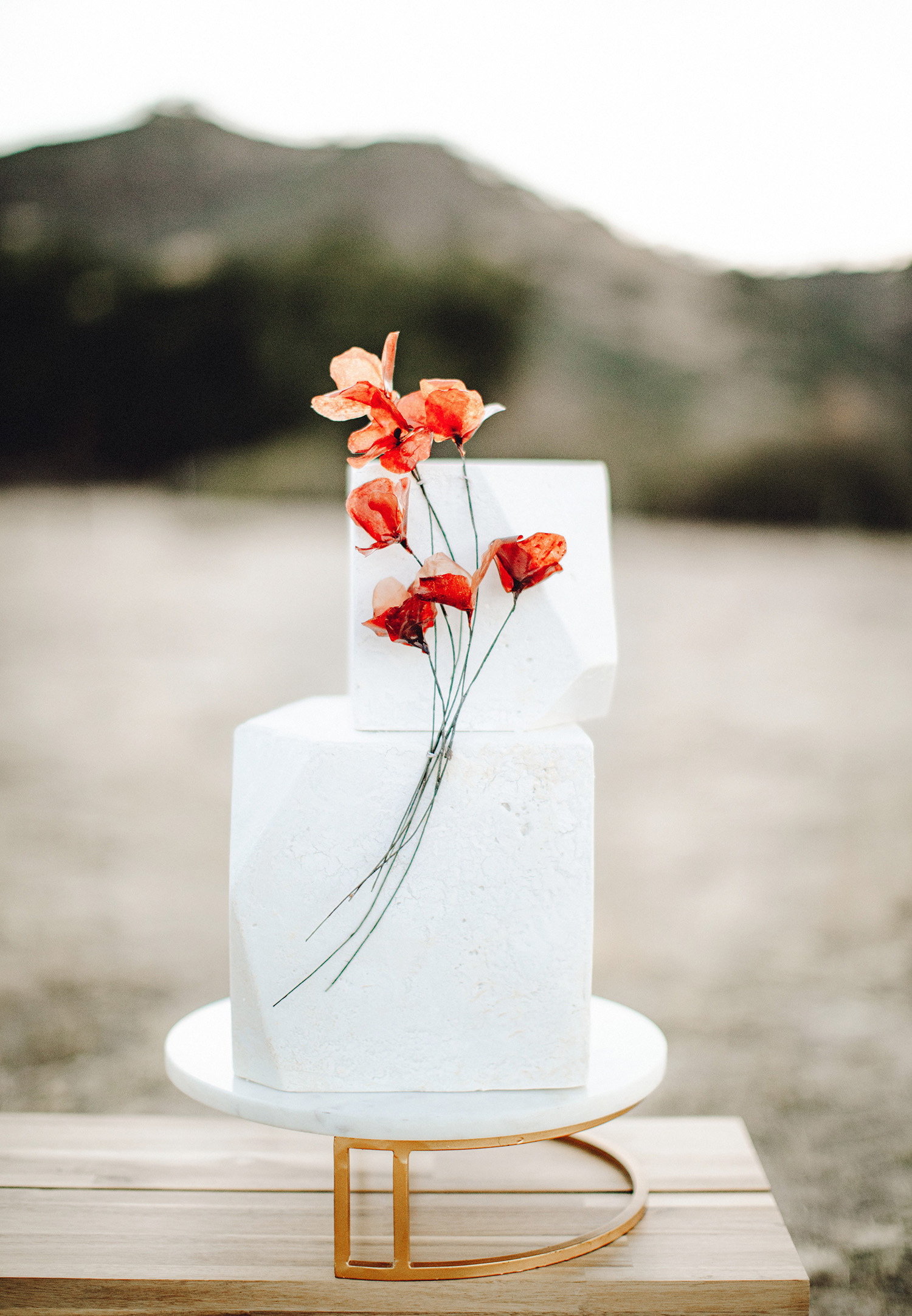 White Geo Cake