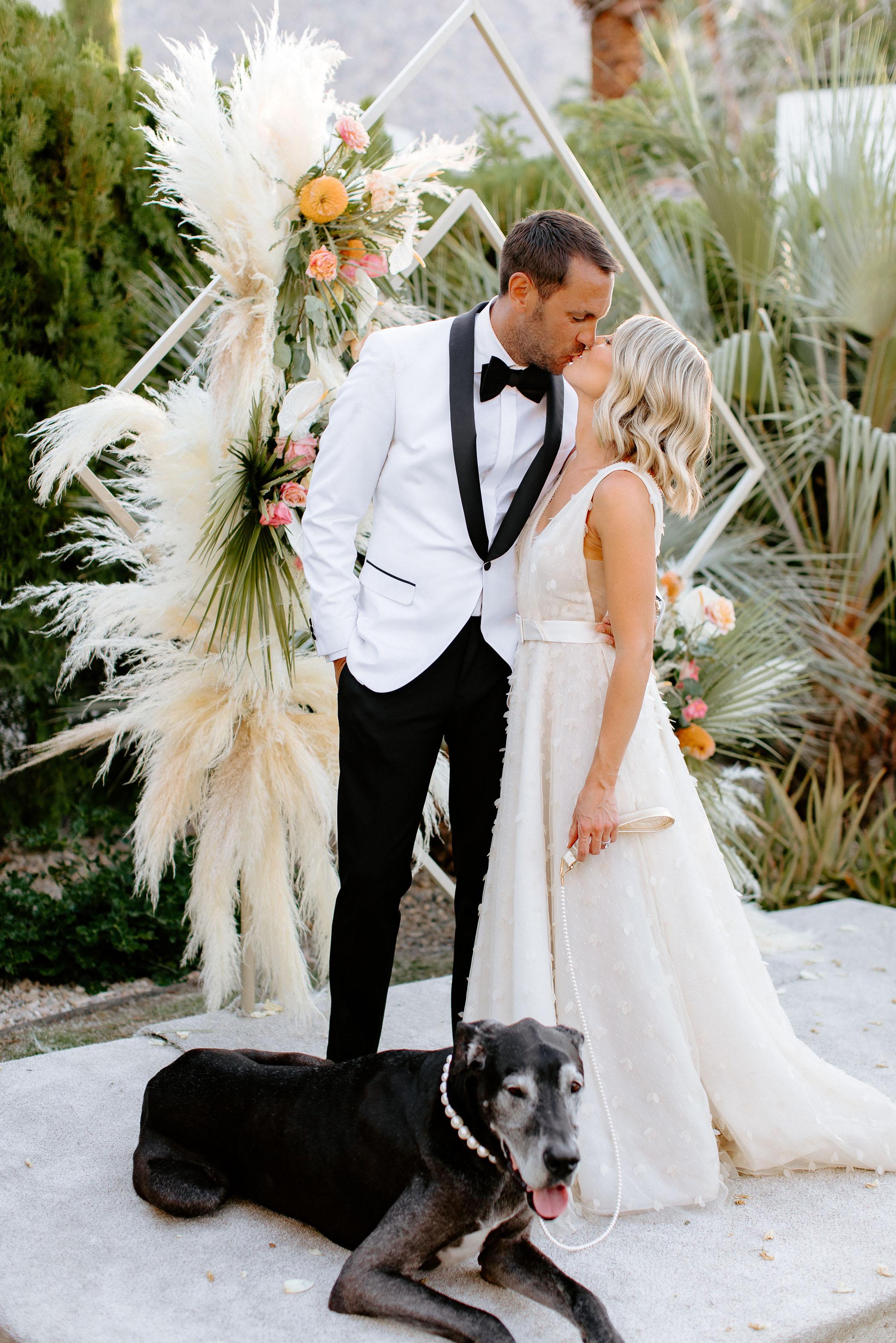 great dane wedding portrait