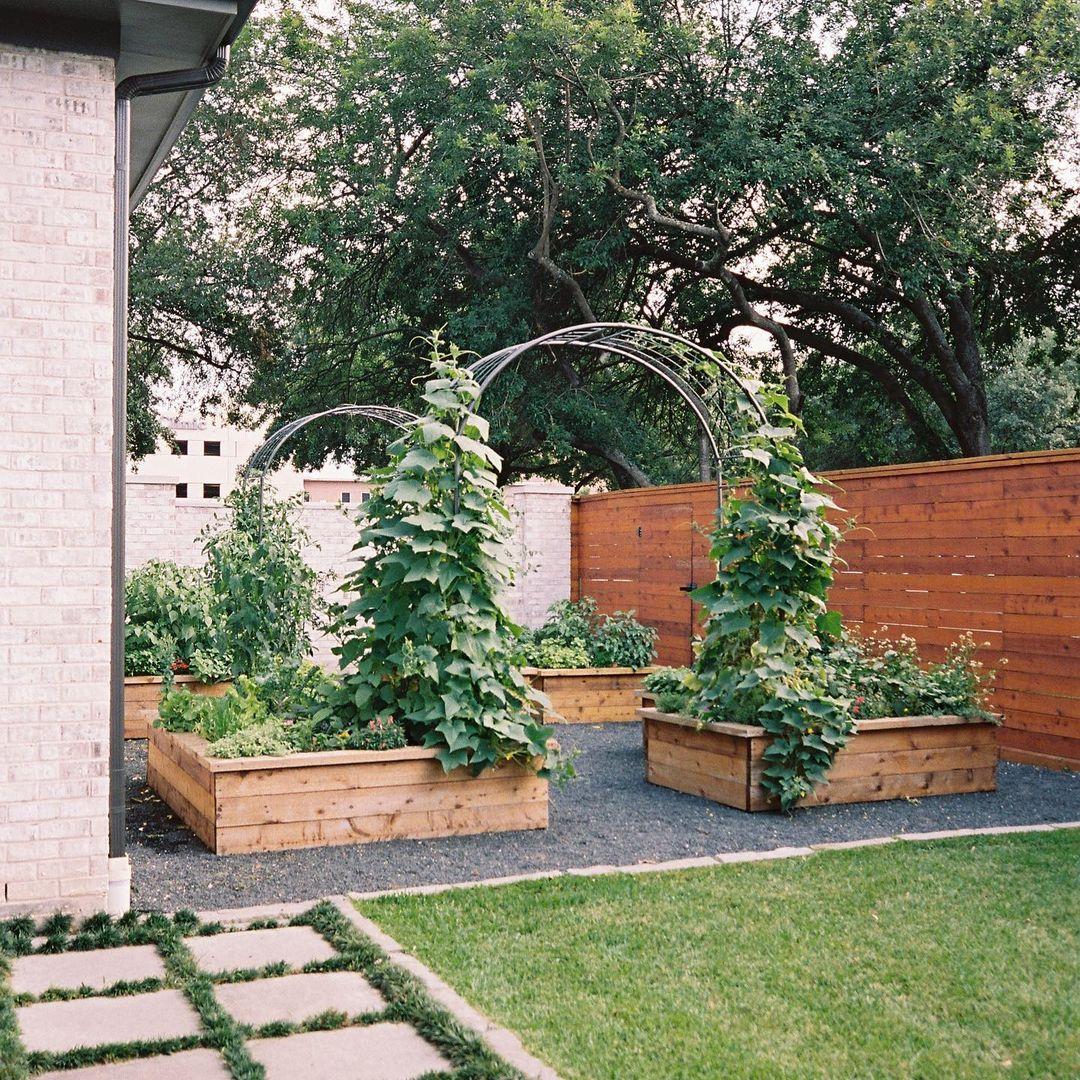 backyard garden raised beds