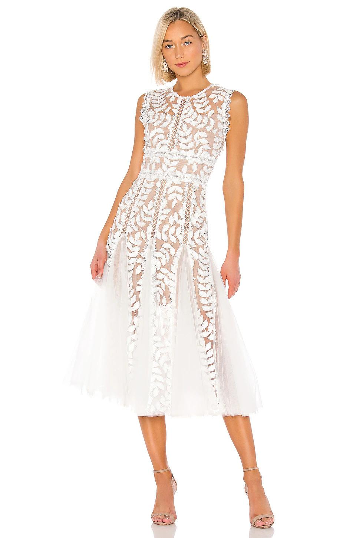 graphic lace white dress