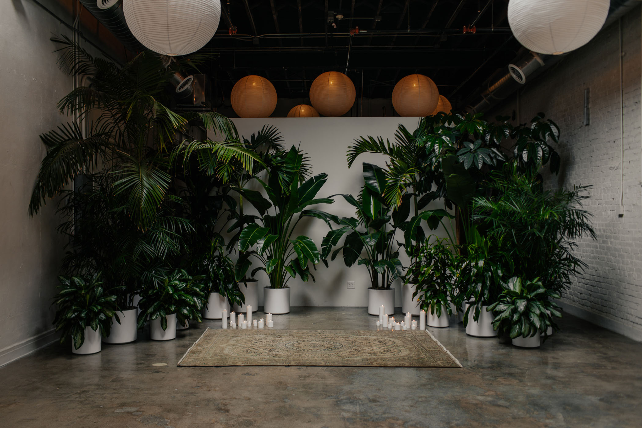 Tropical Potted Plant Ceremony