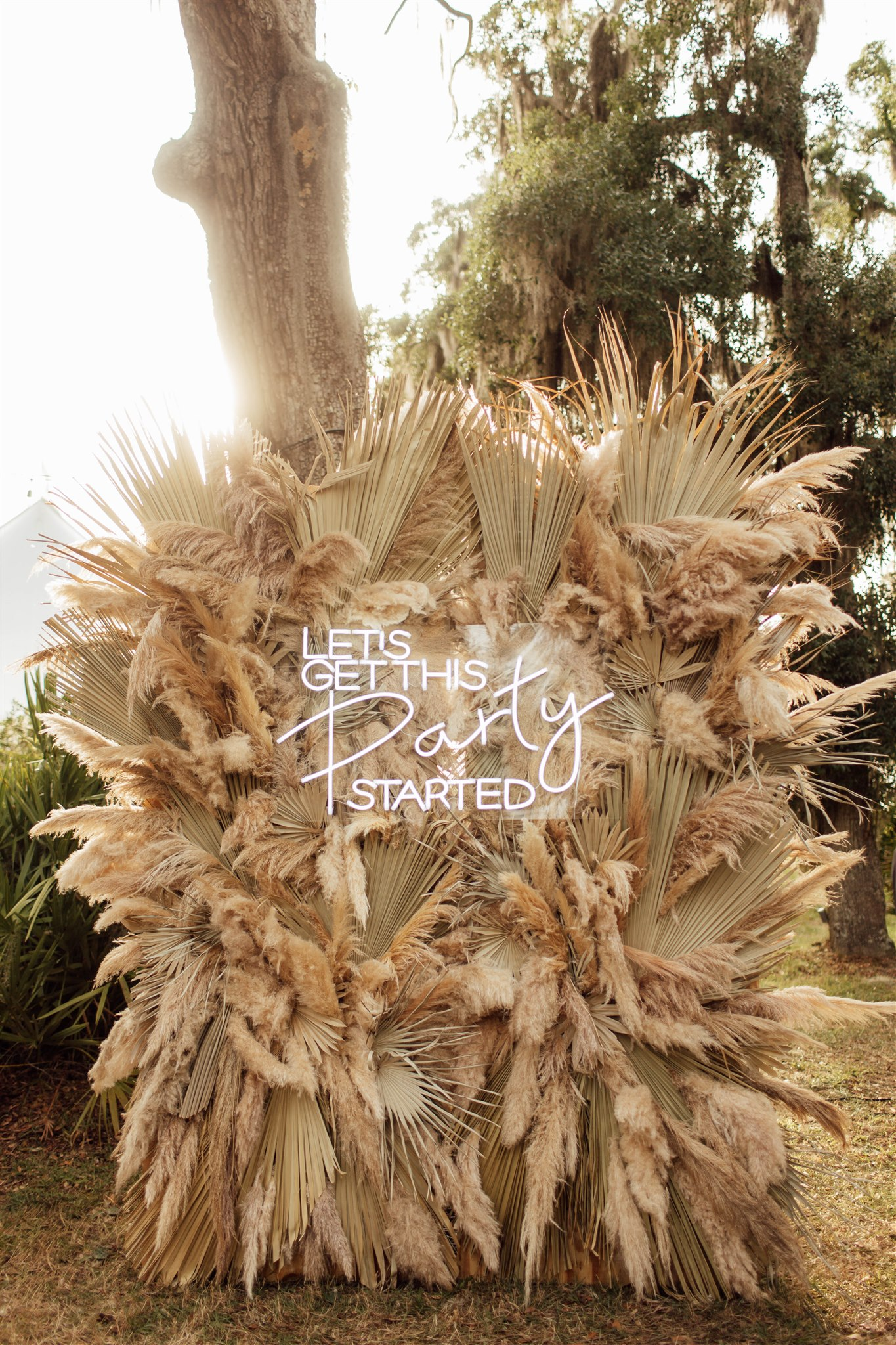 Pampas Grass Neon Sign Backdrop
