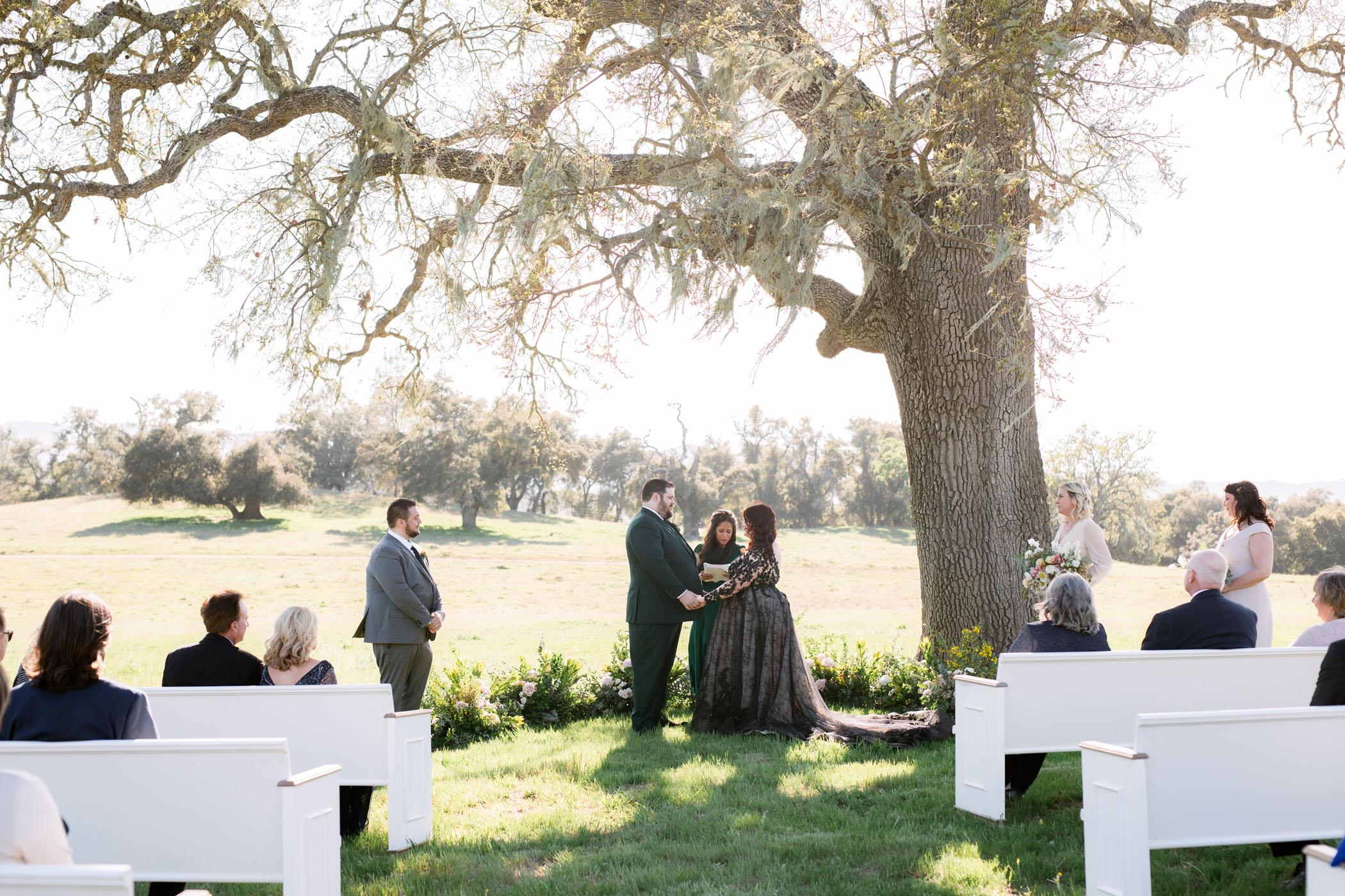 Alfresco Ceremony with a Black Wedding Dress