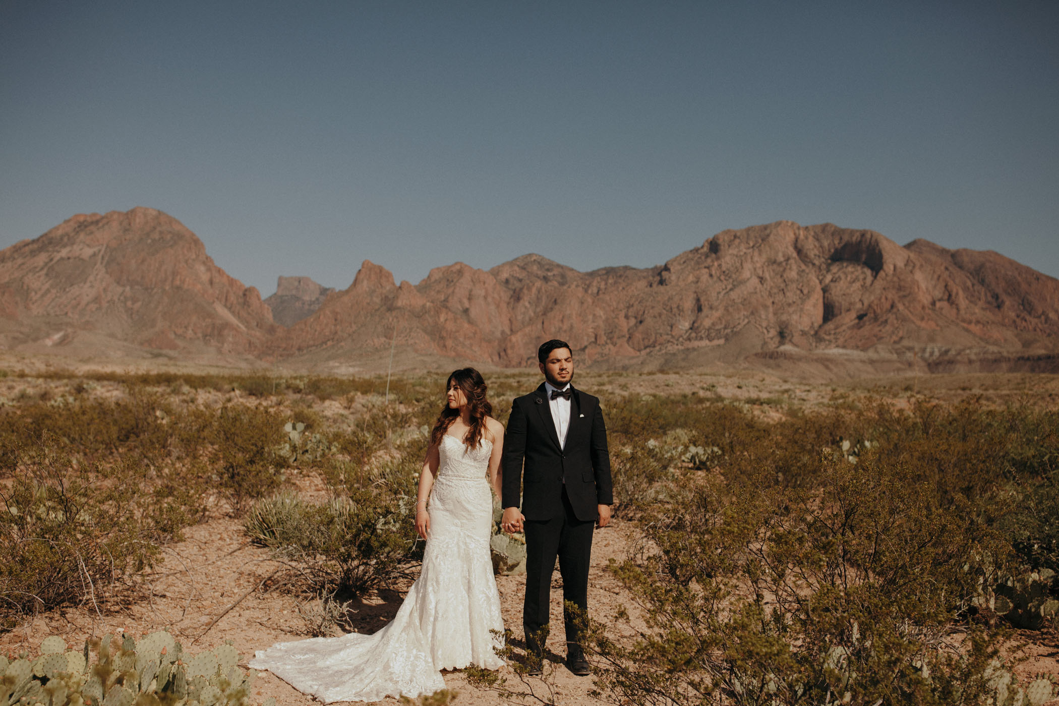Bride and groom holding hands in front of the desert landscape