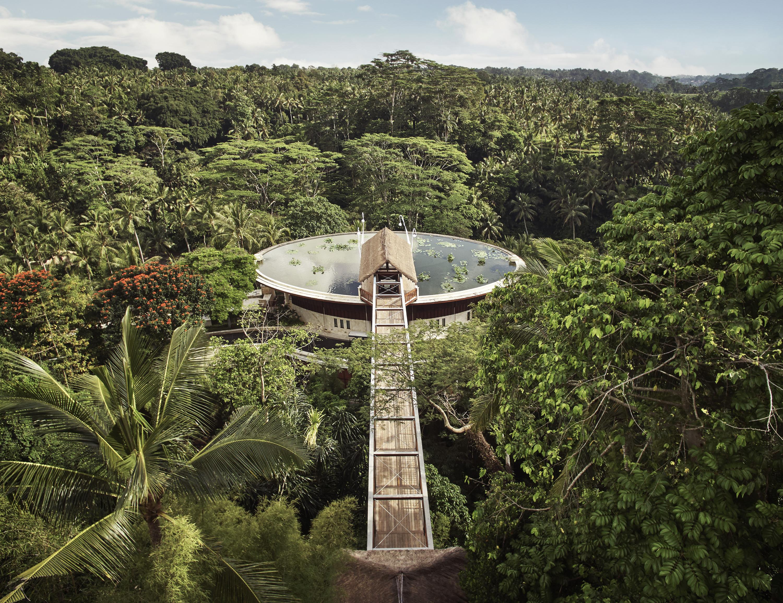 four seasons ubud bali honeymoon