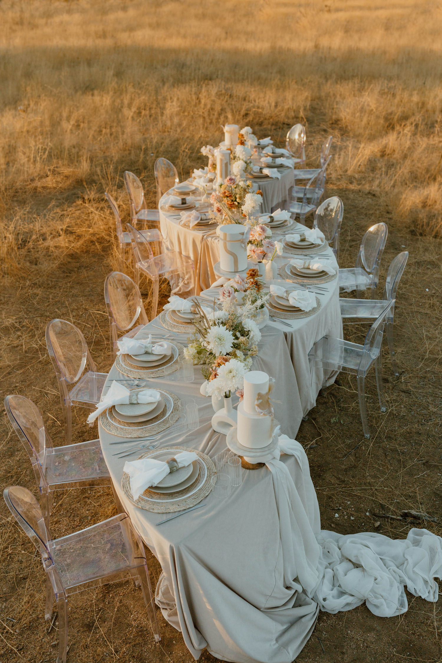 Serpentine Table in a Field for a Small Wedding